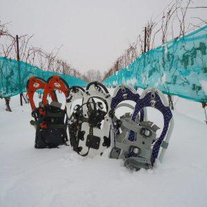 Vineyard Snowshoe & Wine